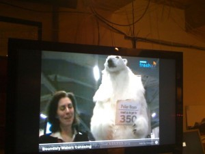 Much hilarity in the Fresh Air Center yesterday when this reporter, livestreaming from the Bella Center, was upstaged by a 350-toting polar bear