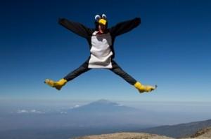 sean conway penguin suit