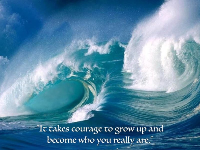 The Art of Living Courageously Week 12: WRAP-UP