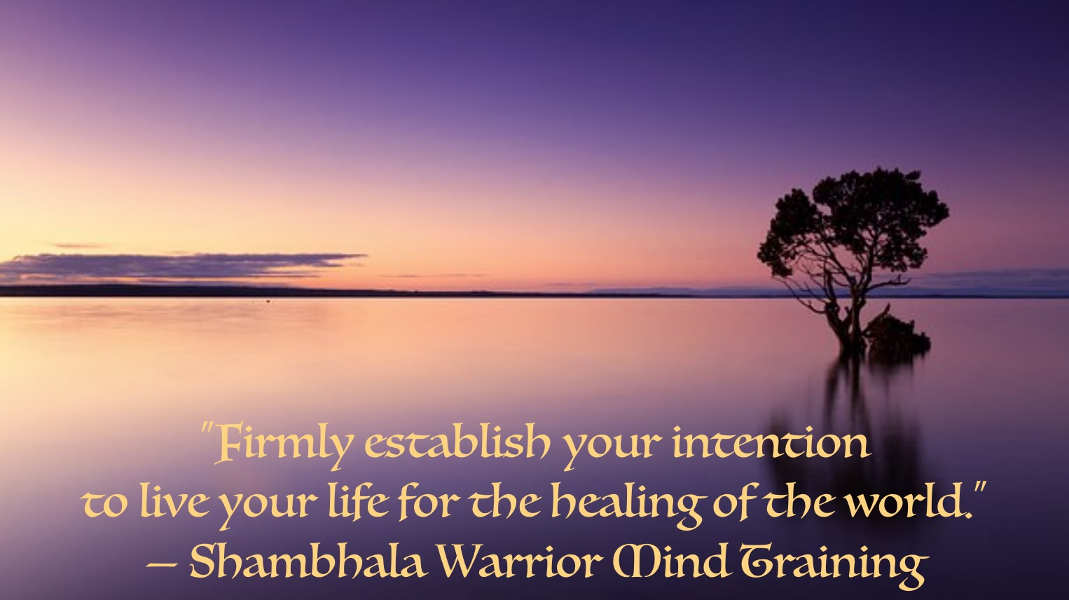 Shambhala Warrior Mind Training